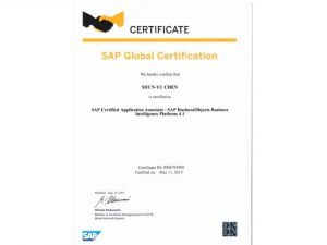 SAP BusinessObjects Business Intellignce Platform 4.1